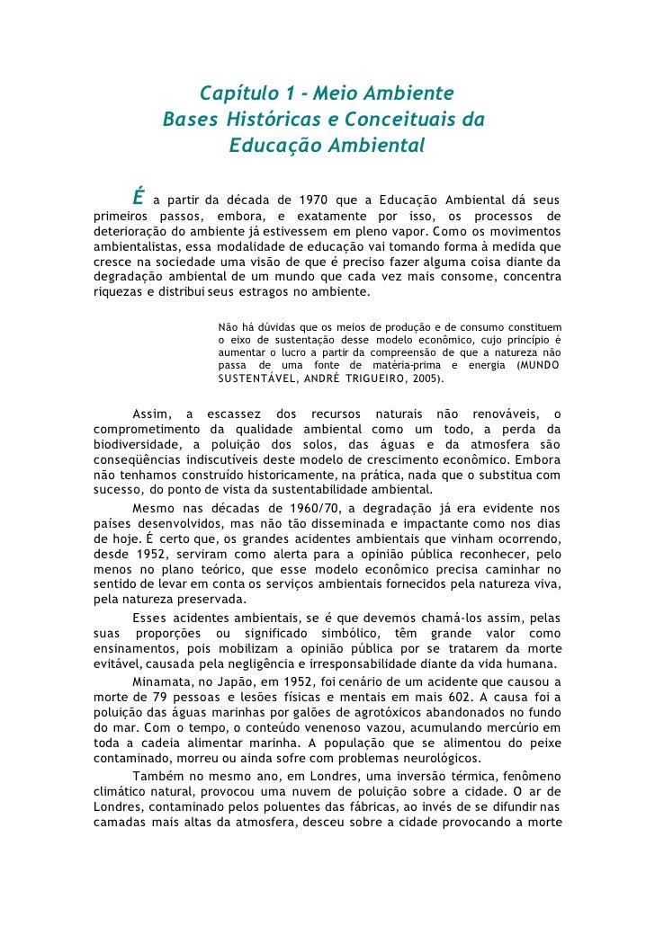Capítulo 1 - Meio Ambiente           Bases Históricas e Conceituais da                 Educação Ambiental      É   a parti...