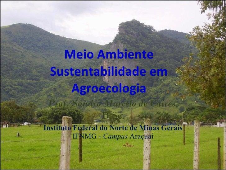 Meio Ambiente Sustentabilidade em Agroecologia Prof. Sandro Marcelo de Caires , D.Sc. Instituto Federal do Norte de Minas ...