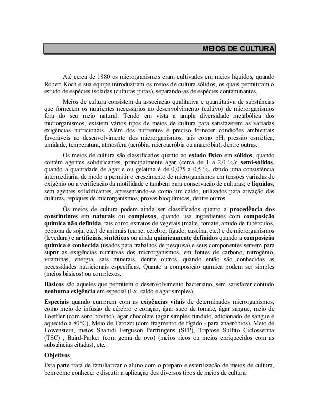 Acad mico - Meios De Cultura - Artigos TCC Teses e Disserta es