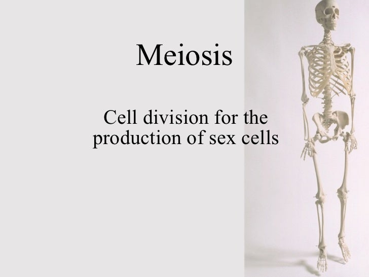 Meiosis Cell division for the production of sex cells