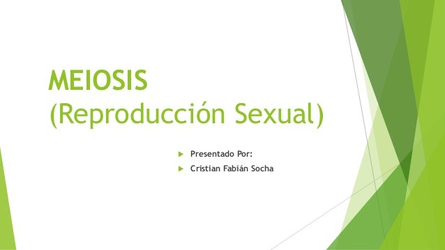 MEIOSIS (Reproducción Sexual)  Presentado Por:  Cristian Fabián Socha