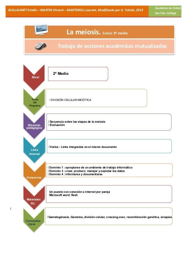 Meiosis: Guía interactiva para segundo medio Biología