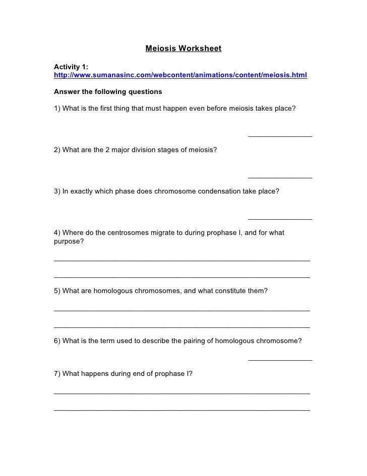 Mitosis Notes Worksheet - Thedesigngrid