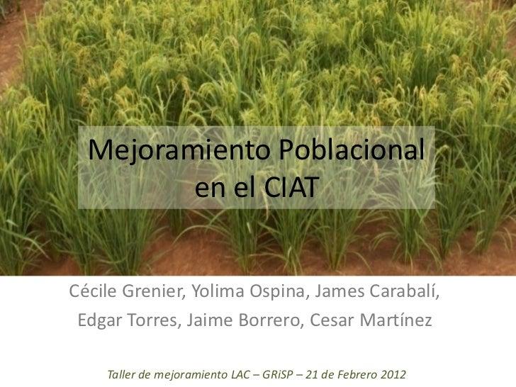 Mejoramiento Poblacional         en el CIATCécile Grenier, Yolima Ospina, James Carabalí, Edgar Torres, Jaime Borrero, Ces...
