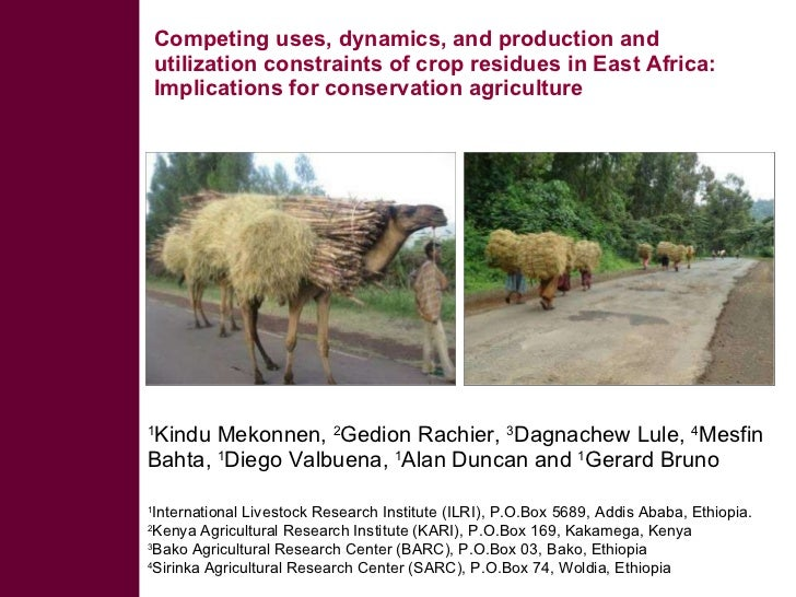 Competing uses, dynamics, and production and utilization constraints of crop residues in East Africa: Implications for con...