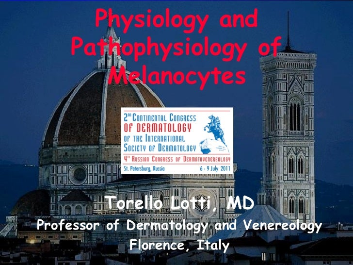 Melanocyte physiology and pathophysiology by Prof. Torello Lotti