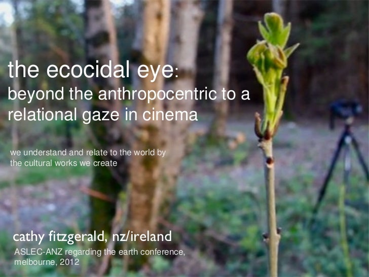 the ecocidal eye:beyond the anthropocentric to arelational gaze in cinemawe understand and relate to the world bythe cultu...