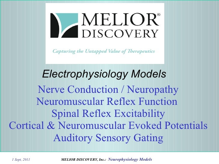 Nerve Conduction / Neuropathy Neuromuscular Reflex Function  Spinal Reflex Excitability Cortical & Neuromuscular Evoked Po...