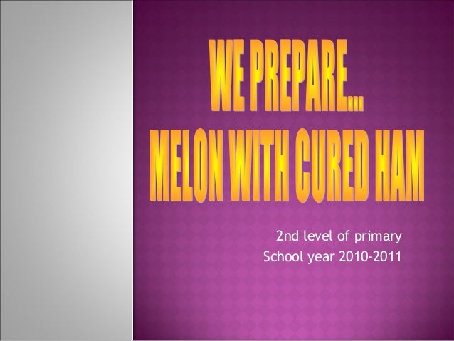 2nd level of primary School year 2010-2011
