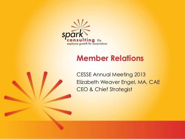 Member Relations CESSE Annual Meeting 2013 Elizabeth Weaver Engel, MA, CAE CEO & Chief Strategist