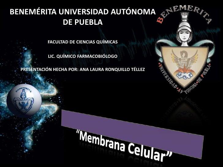 BENEMÉRITA UNIVERSIDAD AUTÓNOMA DE PUEBLA<br />FACULTAD DE CIENCIAS QUÍMICAS <br />LIC. QUÍMICO FARMACOBIÓLOGO<br />PRESEN...