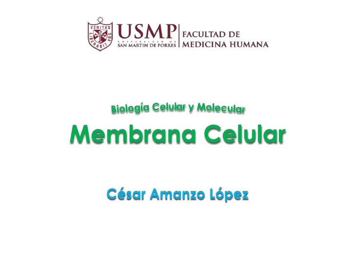 César Amanzo López