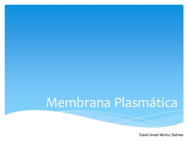 Membrana Plasmática             David Israel Muñoz Salinas