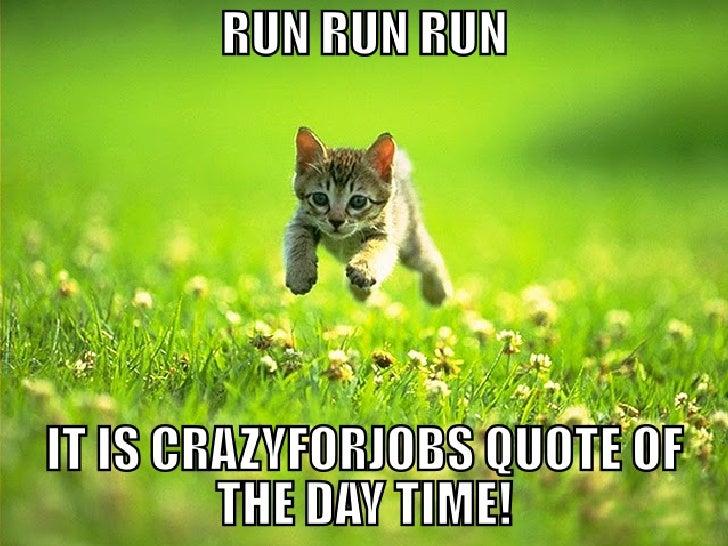 Meme Crazy for Jobs II