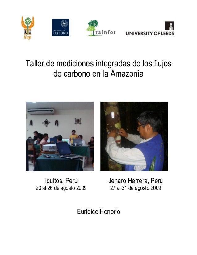 0 | P a g e Taller de mediciones integradas de los flujos de carbono en la Amazonía Iquitos, Perú 23 al 26 de agosto 2009 ...