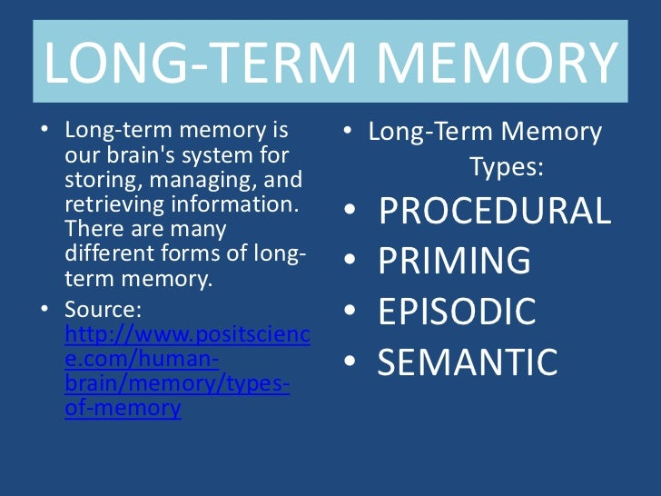 What Is Long-Term Memory?