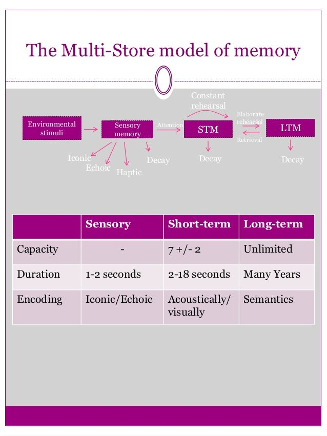 Decay Memory of memory Sensory memory