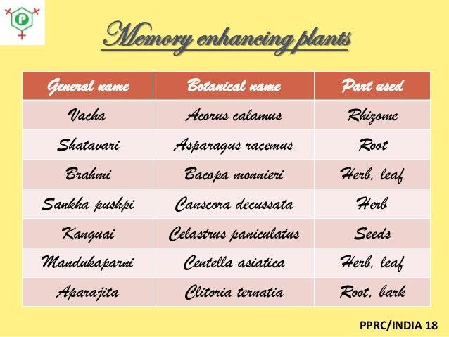 Best herbal medicine for memory