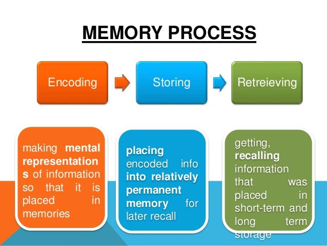 the process of encoding a stage of memory The memory process (stages of memory) 1 encoding: putting in information a flashbulb memory b automatic processing c effortful processing i.