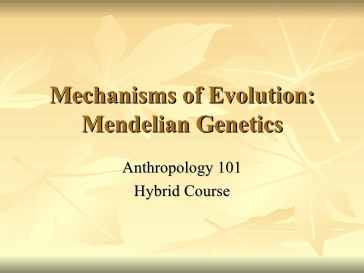 Mechanisms of Evolution: Mendelian Genetics Anthropology 101 Hybrid Course