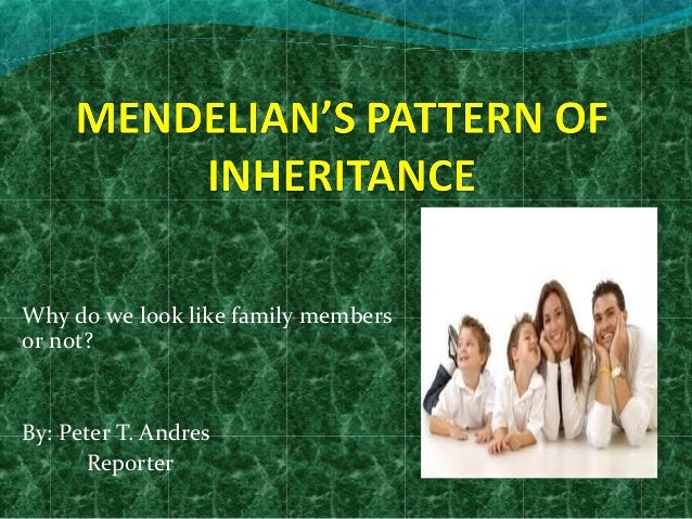 Why do we look like family members or not?  By: Peter T. Andres Reporter