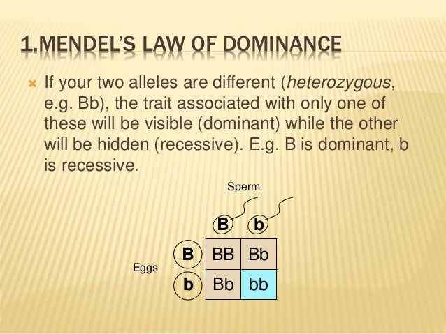 law of dominance - photo #13