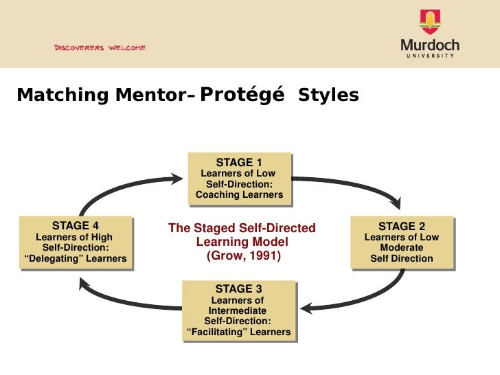 mentor protege relationship phases and stages