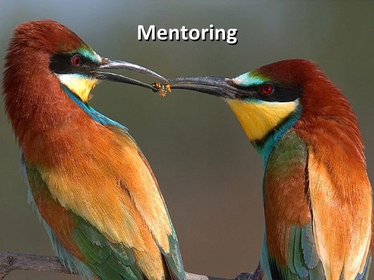 Mentoring student training 2010