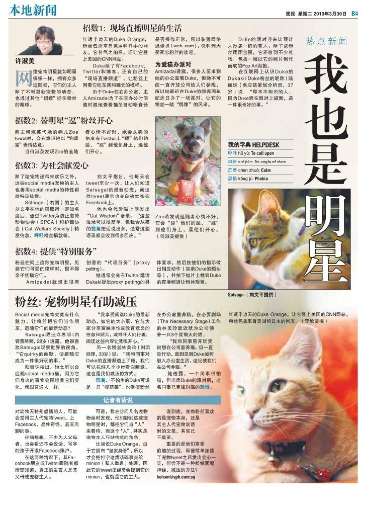 Satsugaicat on the news