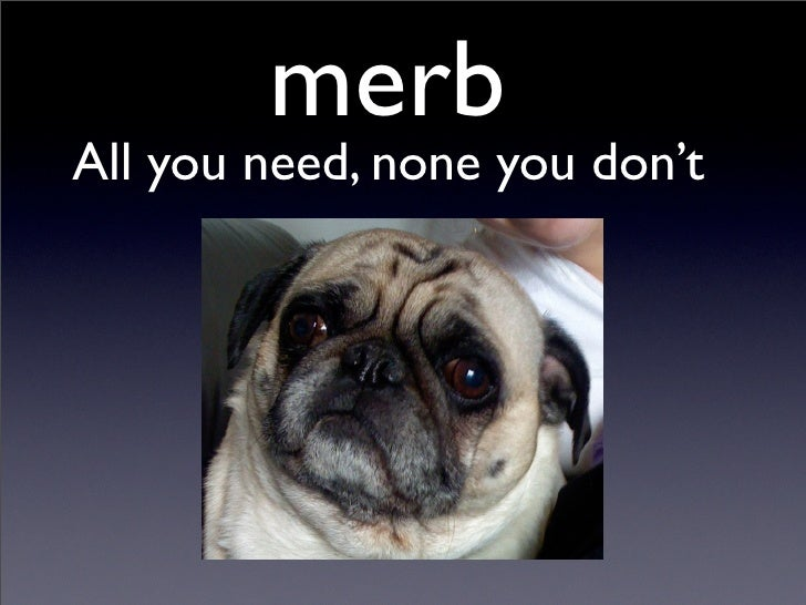merb All you need, none you don't