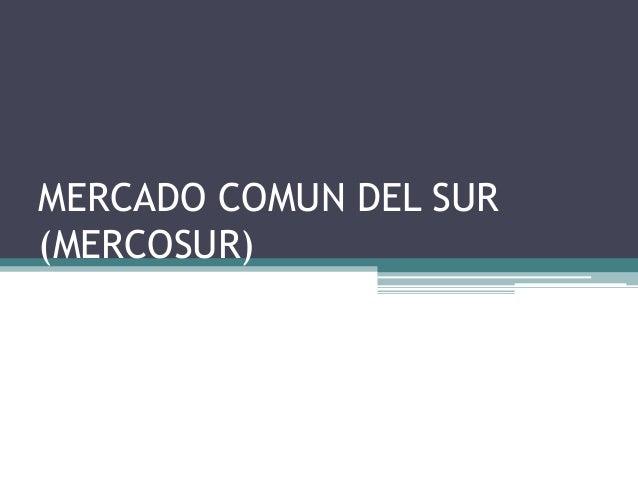 MERCADO COMUN DEL SUR (MERCOSUR)