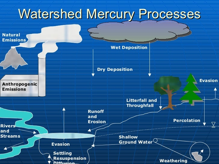 Watershed Mercury Processes Anthropogenic Emissions Wet Deposition Dry Deposition Evasion Natural Emissions Percolation Sh...