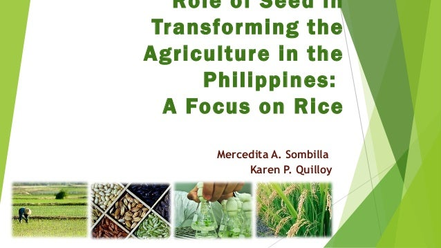 Role of Seed in Transforming the Agriculture in the Philippines: A Focus on Rice Mercedita A. Sombilla Karen P. Quilloy