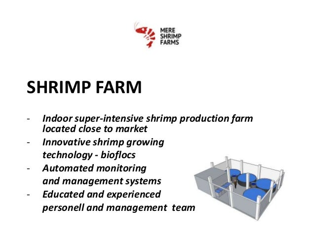 Mere Shrimp Farm Ltd Indoor Shrimp Farm Project Presentation
