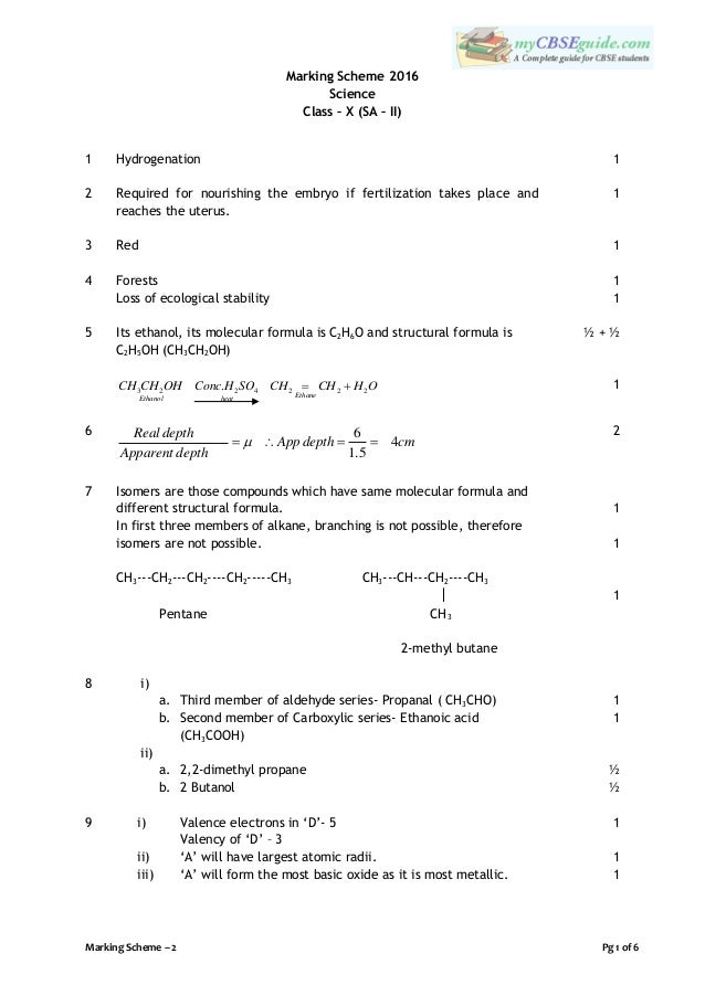 math worksheet : grade 8 maths past exam papers in sri lanka  past papers grade  : Grade 8 Maths Past Papers In Tamil Medium