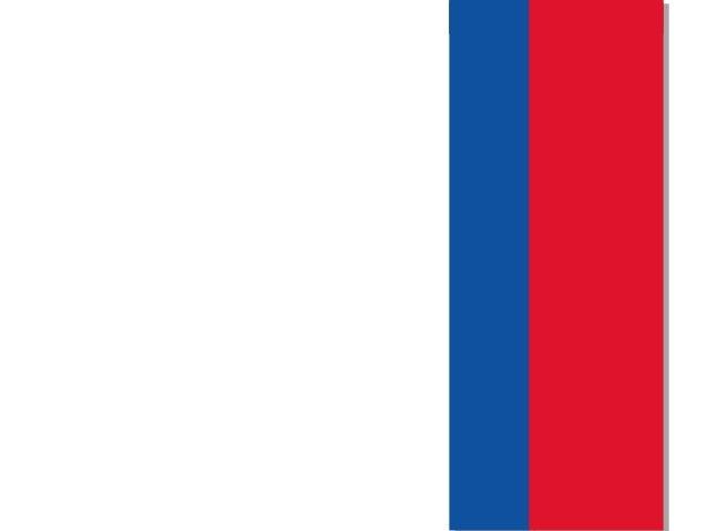 El Sello de Chile