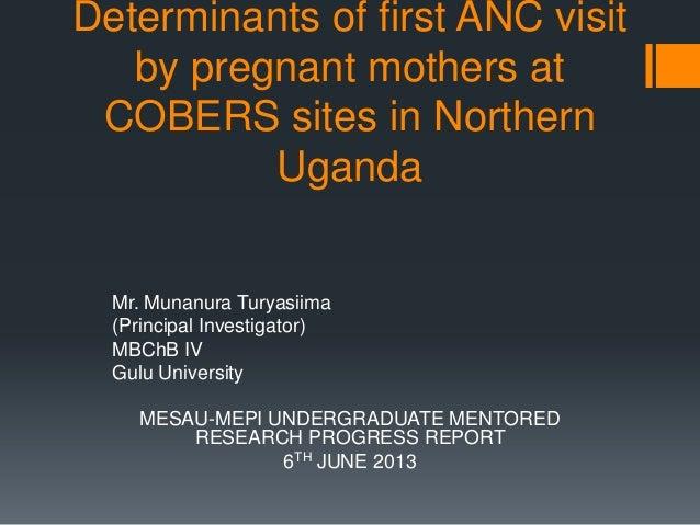 Mesau mepi research progress report