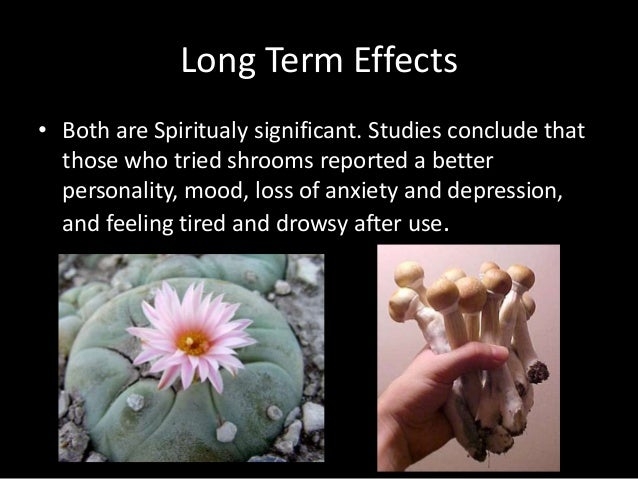 Short term effects of mescaline