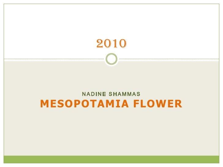 Nadine shammas<br />Mesopotamia flower<br />2010<br />