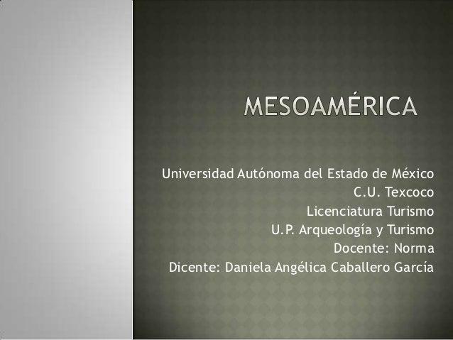Universidad Autónoma del Estado de México                              C.U. Texcoco                       Licenciatura Tur...