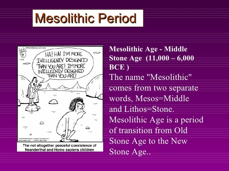 Mesolithic houses