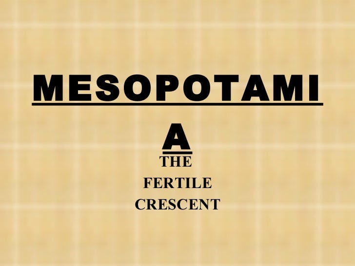 Mespotamia the first civilization