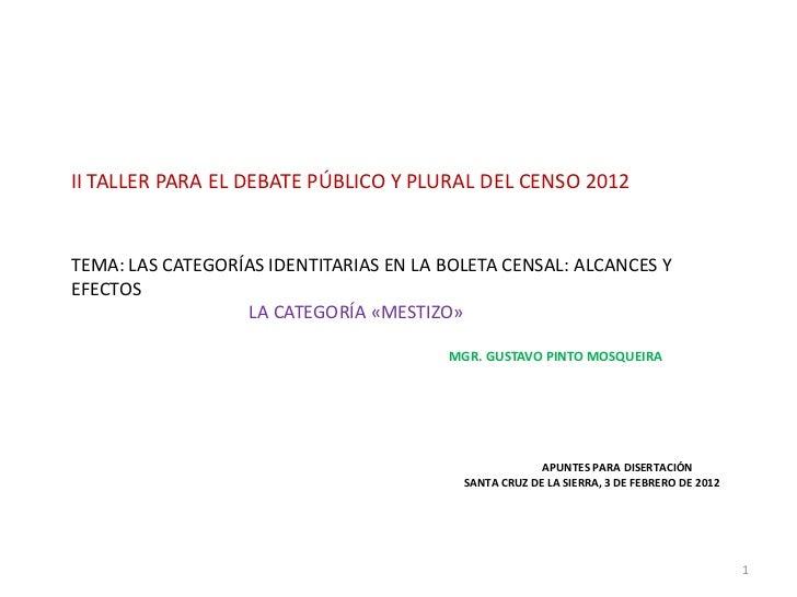 II TALLER PARA EL DEBATE PÚBLICO Y PLURAL DEL CENSO 2012TEMA: LAS CATEGORÍAS IDENTITARIAS EN LA BOLETA CENSAL: ALCANCES YE...
