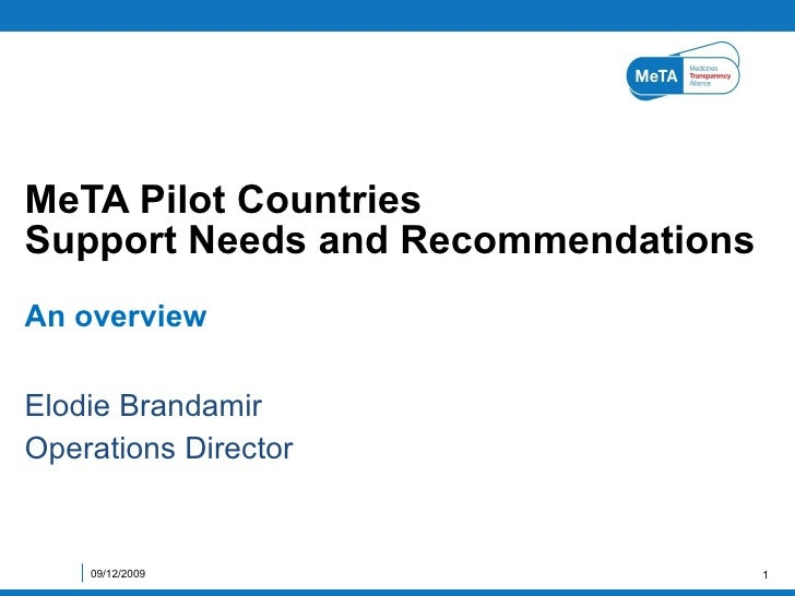 MeTA pilot countries support needs and recommendations