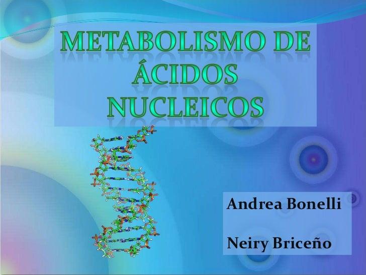 metabolismo de nucleotidos pdf