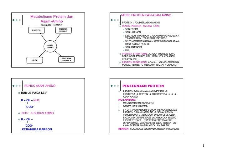 Metabolisma asam amino