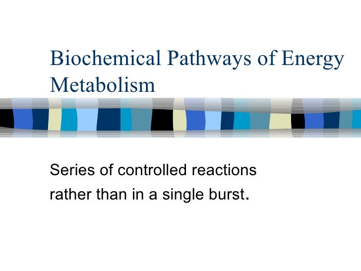 Biochemical Pathways of Energy Metabolism Series of controlled reactions   rather than in a single burst .