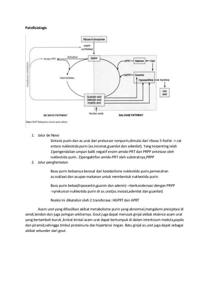 Patofisiologis    1. Jalur de Novo                Sintesis purin dan as.urat dari prekursor nonpurin,dimulai dari ribosa 5...