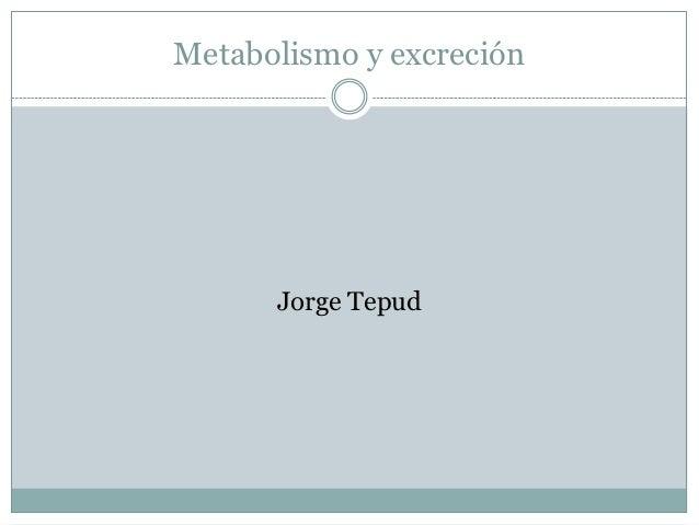 Metabolismo y excreción      Jorge Tepud