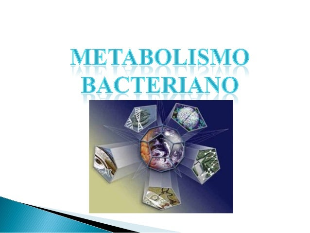 Requerimientos nutritivos Macronutrientes:Carbono, Nitrógeno, Fósforo, Azufre, Potasio, Magnesio, Calcio, Sodio, Hierro, A...